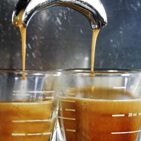 Espresso Mexico Maragogype