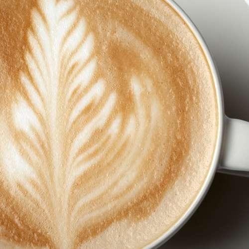 Nicaragua Maragogype Kaffee-Mischung