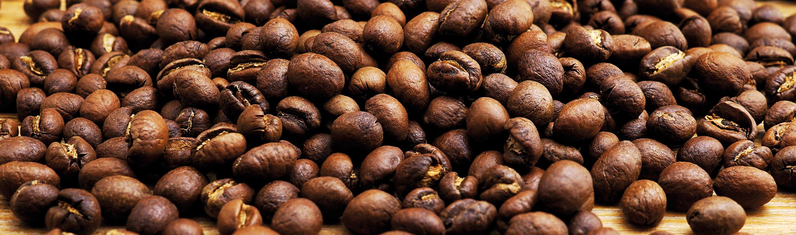 Perlbohne Kaffee kaufen