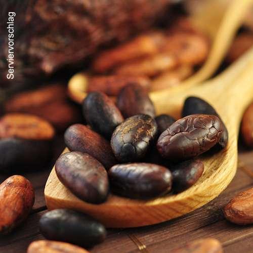 Kakaobohnen Single Origin Venezuela Sur del Lago geröstet