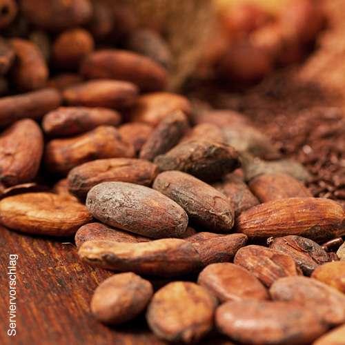 Kakaobohnen Single Origin Bio Dominikanische Republik Hispaniola roh & ungeröstet
