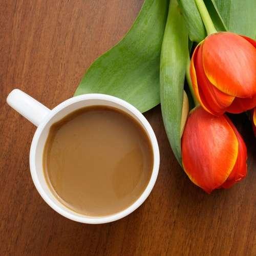Frühlingskaffee Probierset 4 x 100 g