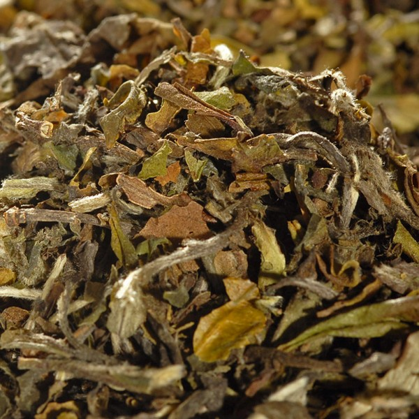 Oolong-Tee-Schwarzertee-kaufen