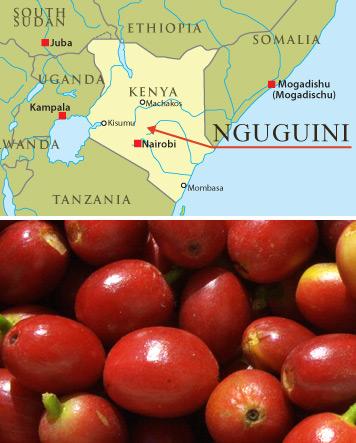 Kenia-AA-Plua-Kaffee-Karte