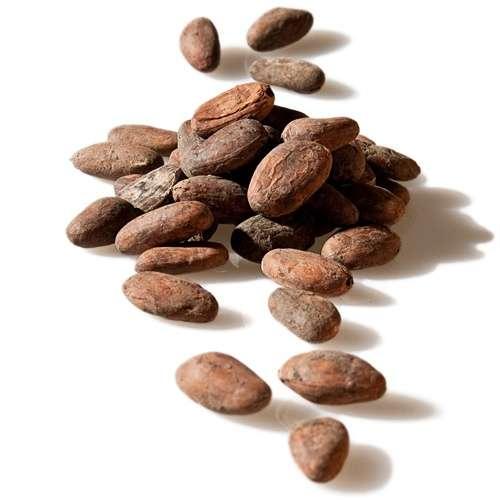 Kakaobohnen roh und ungeröstet